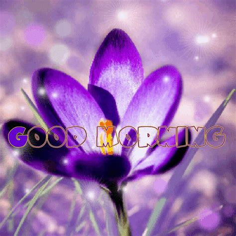 Welcome To Teri At Pretty By Nature by Morning Image Wallpaper Sportstle