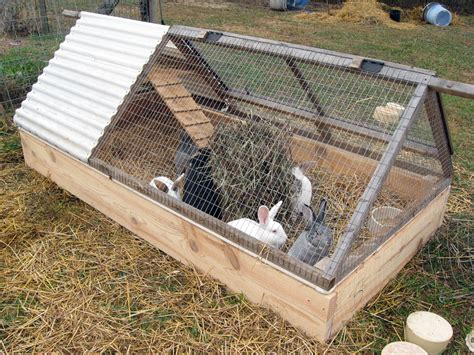 rabbit beds outdoor wire cover home design idea