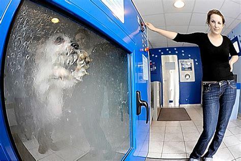 How To Wash Mat In Washing Machine by O Mat Automatic Washing Vending Machine Drum