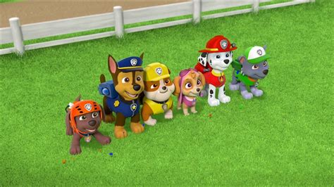Paw Patrol My Library paw patrol arrives on nickelodeon s noggin service collider