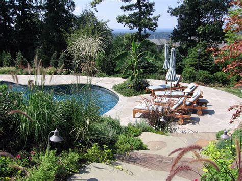 backyard pool ideas pictures best backyard pool landscaping ideas syrup denver decor backyard pool landscaping