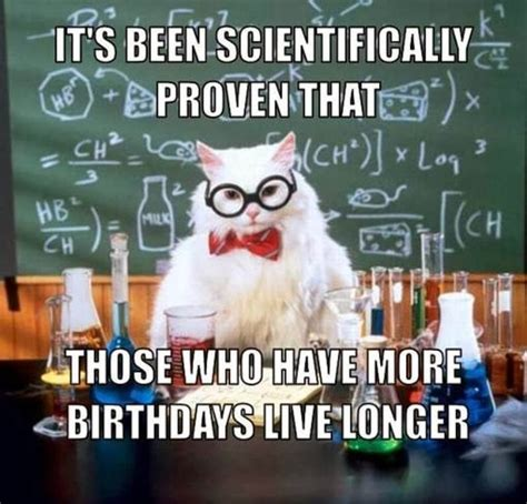 Funny Pics Memes - birthday meme funny pics happy birthday cat meme mojly