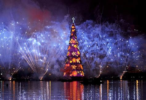 brazil giant christmas tree actualidad pinterest