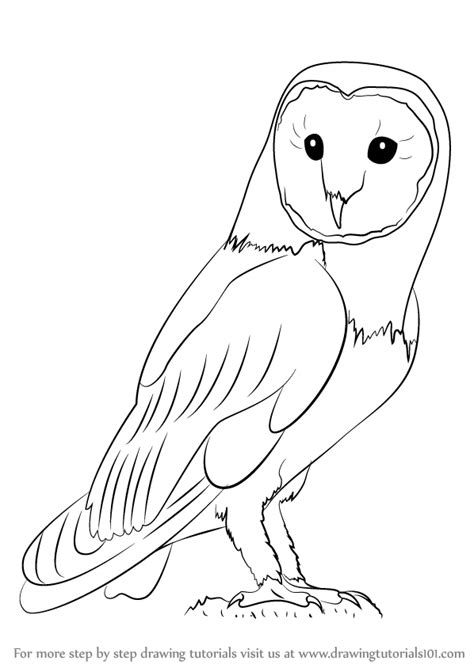 how to draw doodle owl learn how to draw an owl owls step by step drawing
