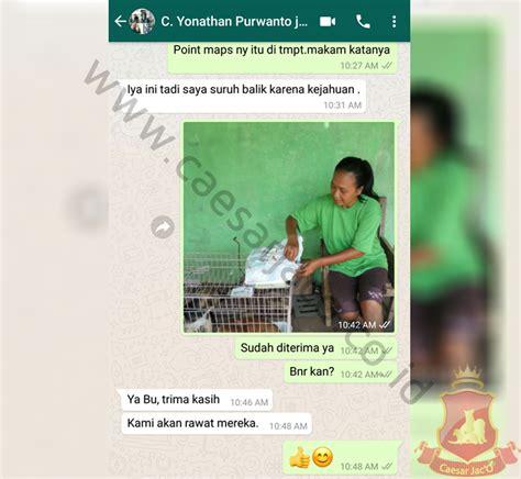 salon hewan terdekat jasa pengiriman hewan anjing kucing antar pulau via