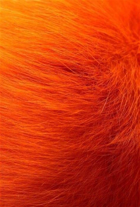 orange pattern web pin by lisabwd2 pin freely on ild animal skins furs