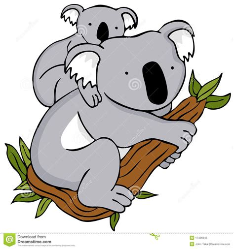 koala clip clipart kaola pencil and in color clipart kaola