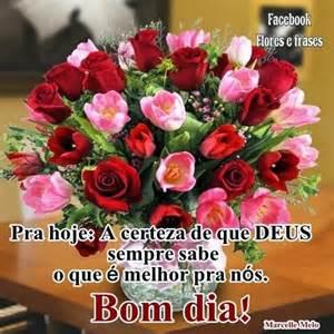 frases e flores flores e frases bom dia
