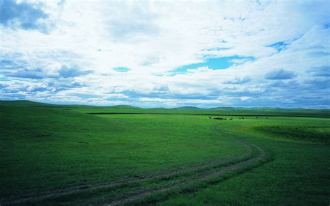 Landscape View Definition Pin Grassland Landscape Wallpaper High Definition