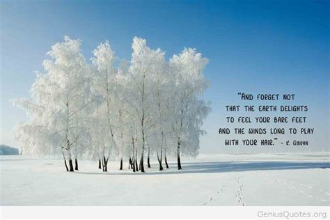 quotes about winter winter tree quotes quotesgram