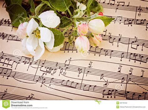 imagenes de rosas musicales fondo musical con las flores de la manzana foto de archivo