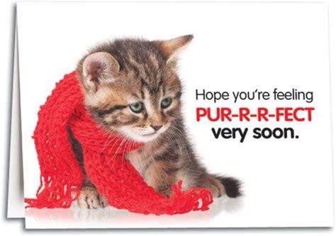 get well soon kitten card feel pur r r fect soon kitty