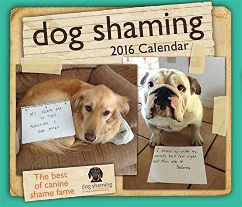 dog shaming desk calendar top best 5 desktop calendars funny for sale 2017 product
