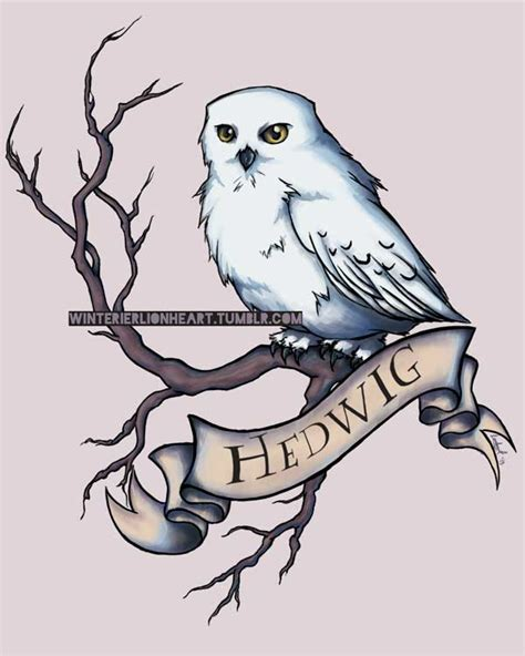 Hedwig by whiteappleartist on DeviantArt