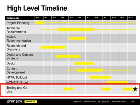 High Level Timeline Template Igxuc14 High Level Timeline 43