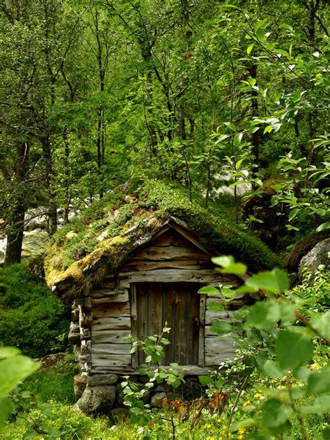haus im wald kleines haus im wald foto bild landschaft r 252 ckkehr