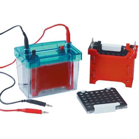 western blot cassette western blot equipment for electrophoretic transfer