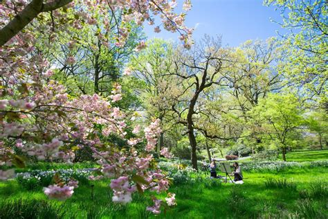 new york botanical garden show tickets botanical garden tickets reviews for the new york