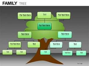 genealogy powerpoint template picture powerpoint templates slides and graphics