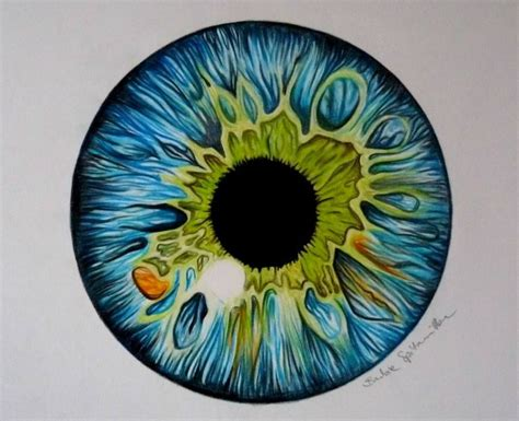 cool colored pencil drawings colored pencil eye drawing by barbiespitzmuller on
