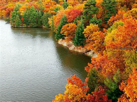 autumn in new york home state nature hd wallpaper