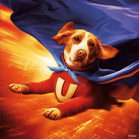 underdogs the film underdog the movie the marcos kirsch experience 174