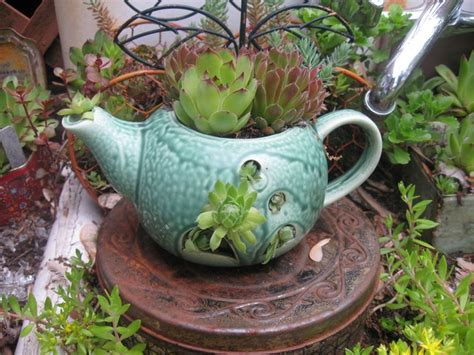 Teapot Planters by Pin By Donna Hill On Teacup Teapot Planters
