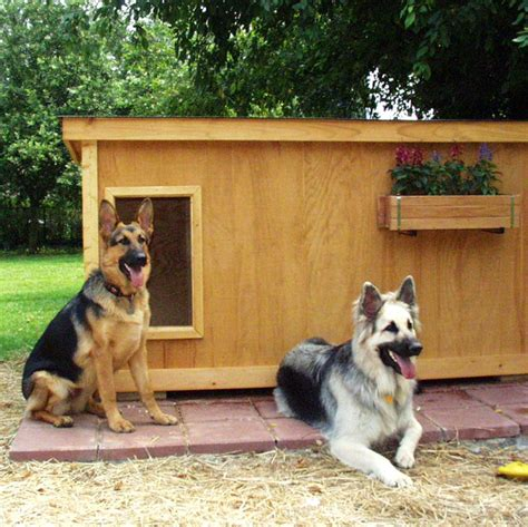 How To Choose The Right German Shepherd Dog House Us Bones
