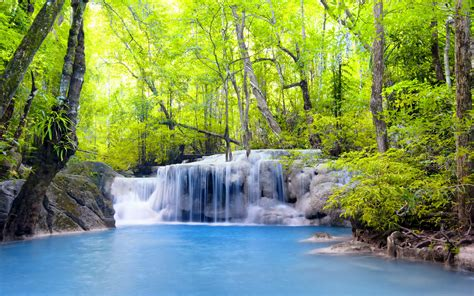 imagenes de paisajes uñas hermosos paisajes tropicales im 225 genes taringa