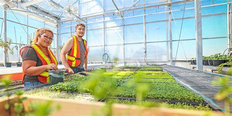 landscape technician horticulture technician