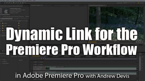 premiere pro workflow dynamic link for the premiere pro workflow adobe