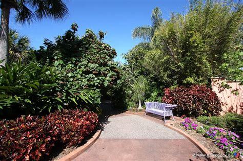 botanical gardens in ta florida botanical gardens ta florida botanical gardens a