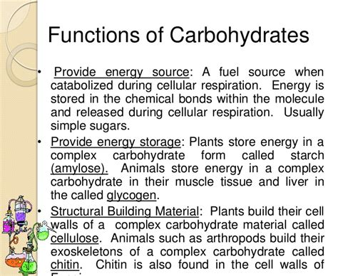 carbohydrates two important functions biochemistry ppt