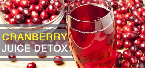 Cranberry Detox Recipe by Cranberry Juice Detox Test