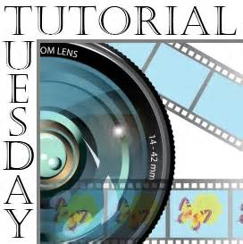 tutorial html a href tutorial tuesday high key photography ramblings and photos