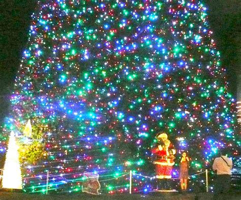 delray beach tree lighting 2017 23 best christmas in delray images on pinterest