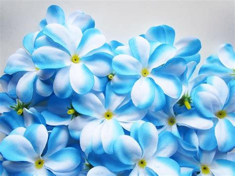 Blue Wedding Flowers Pictures by Beautiful Blue Flowers Wallpapers Hd Poze Cu Flori Rosii