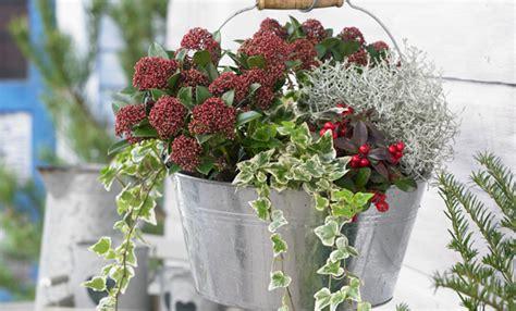 vasi di natale vaso natalizio fai da te per decorare il balcone leitv