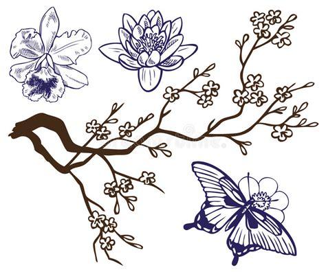 tekening vlinder met bloem tekeningstak met bloemen en vlinders vector illustratie