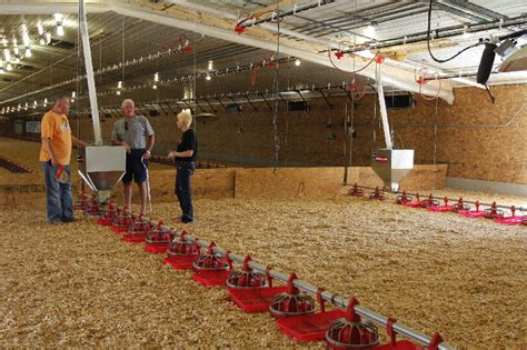 commercial poultry housing design commercial poultry house construction plans house design plans