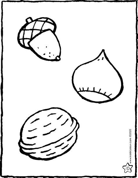 eikel kastanje en walnoot kiddicolour