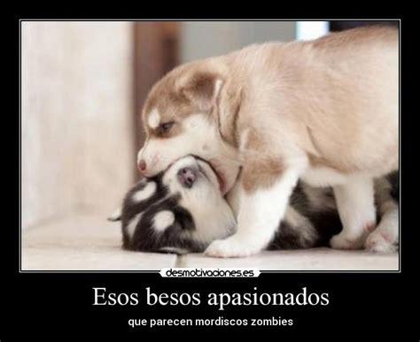 imagenes tumblr besos apasionados esos besos apasionados desmotivaciones