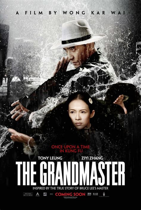 A Place Dvd Release Date The Grandmaster Dvd Release Date March 4 2014