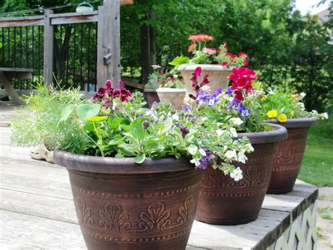 large flower pot ideas loverelationshipsanddating