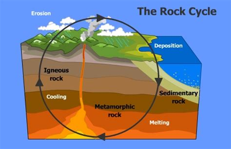 section 3 1 the rock cycle word of the week mrs wilson s science classroom