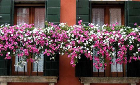 concorso balconi fioriti un concorso sui balconi fioriti ad alessandria oggi cronaca