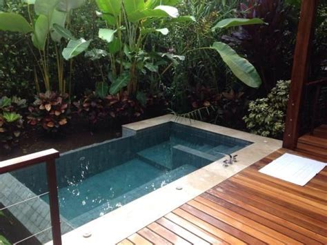 backyard plunge pool best 25 plunge pool ideas on pinterest small pools courtyard pool and houses with