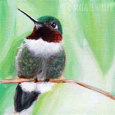 ruby the parakeet books ruby throated hummingbird bird print on wood