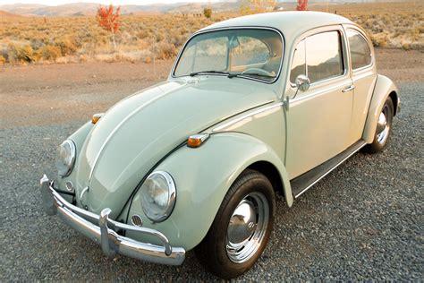 volkswagen beetle 1965 1965 volkswagen beetle 189717