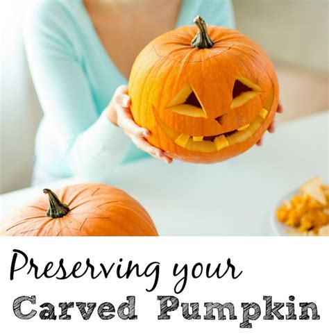 the easiest way to preserve a carved pumpkin frugally blonde